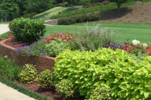 Atlanta Landscaping Maintenance