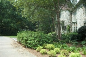 Landscaping in Sandy Springs, GA