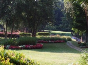 Landscaping - Hutcheson Horticultural