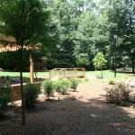 Landscaping Maintenance - Hutcheson Horticultural - 3