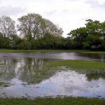 Lawn Drainage Woodstock, GA